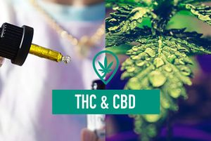 Benefits of CBD and THC together