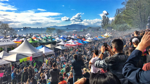 Annual 420 Protest Festival (2020 cancelled)