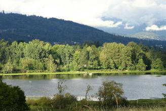 Everything You Need for an Outing at Deer Lake Park in Burnaby