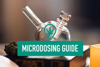 The Beginner's Guide to Microdosing