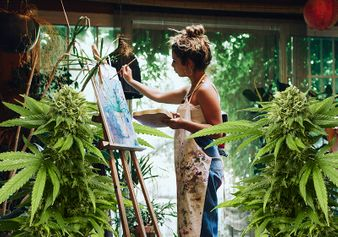 Cannabis and Creativity – How THC Stimulates the Brain