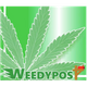 weedypost logo