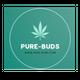 PURE BUDS - BRAMPTON logo