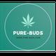 PURE BUDS - PARIS logo