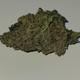 Best Buds by masha logo